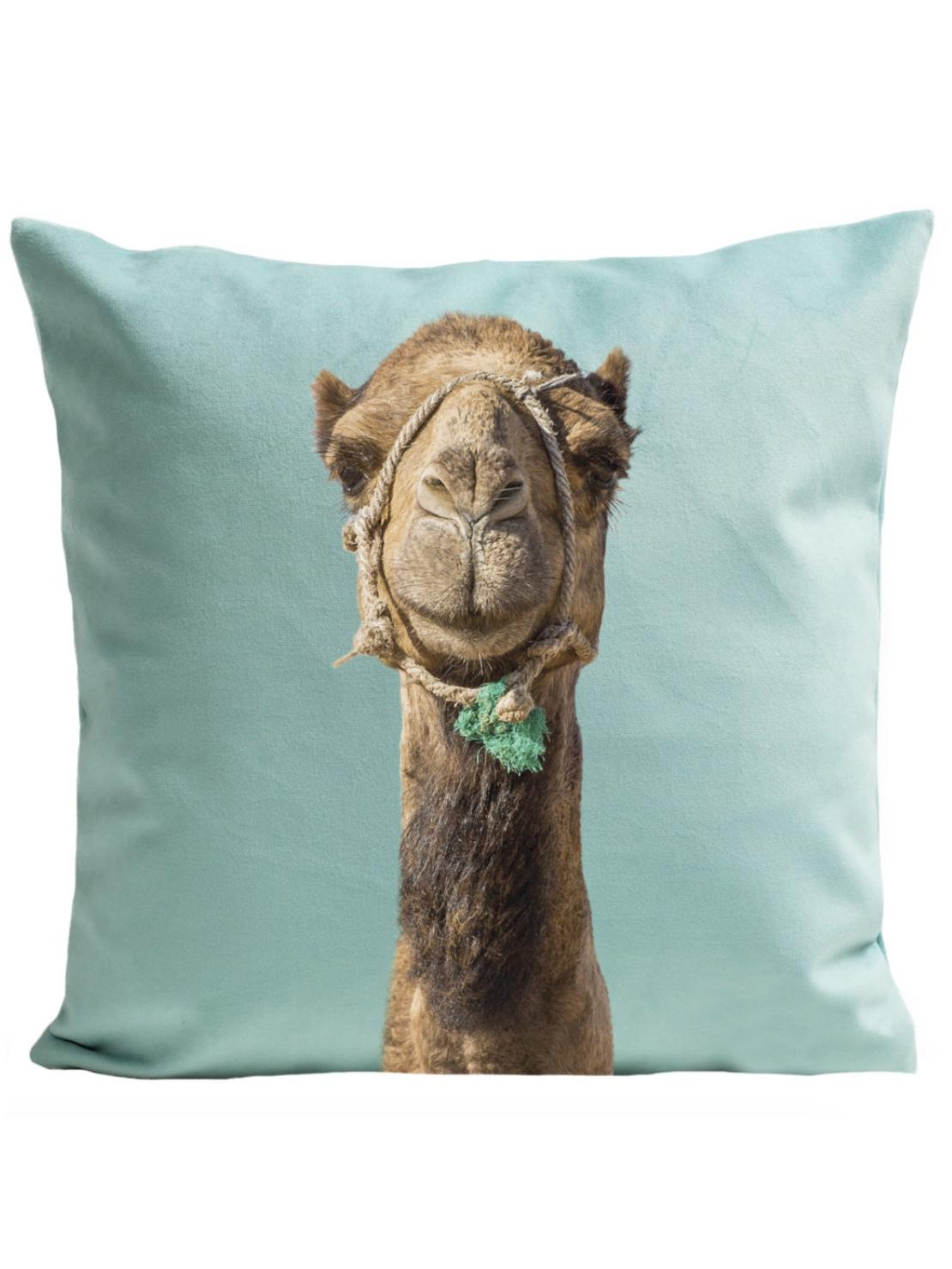 Best Vegan Pillow:  Camel Pillow by Art Pilo