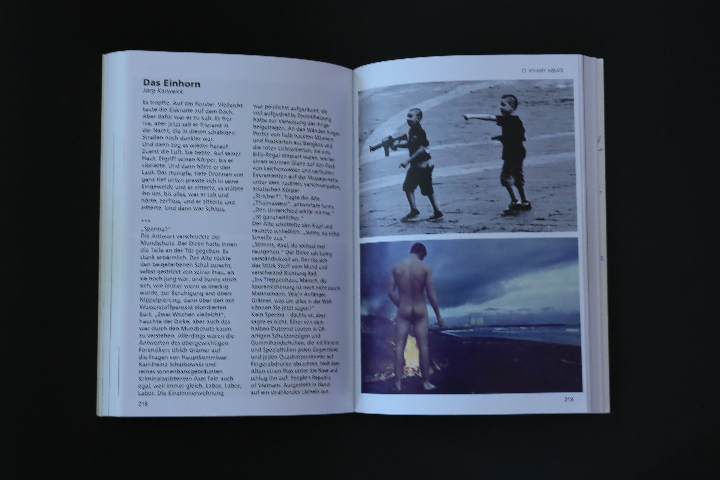 Mein Schwules Auge 8    Edited by Rinaldo Hopf and Axel Schock.    Konkursbuch Verlag Claudia Gehrke, Berlin, 2011    pp 215-221 Deutsch.   https://www.amazon.de/Mein-schwules-Auge-schwule-Jahrbuch/dp/3887693981