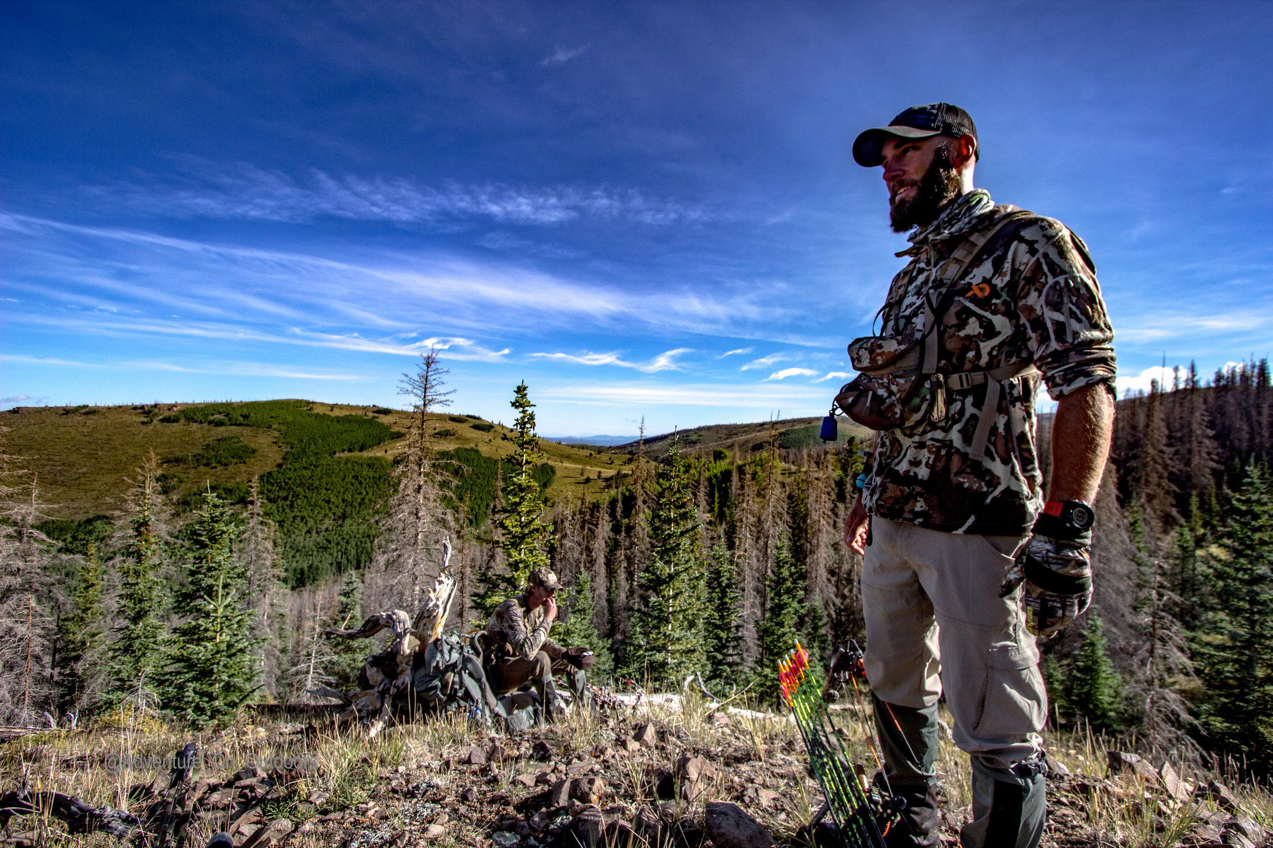 Gaze treeline  Elk Camp.jpg