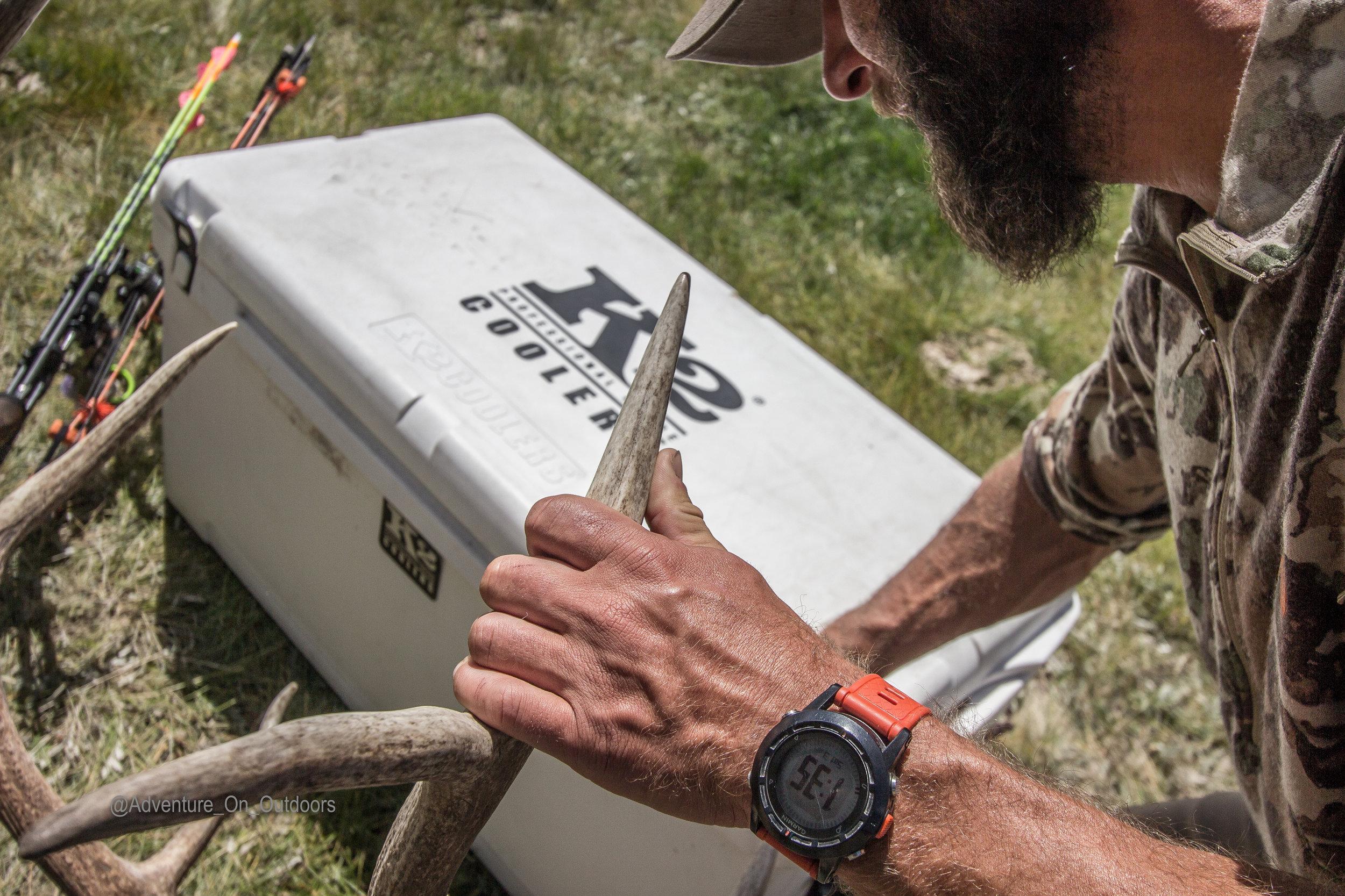Horn Grip K2  Elk Camp.jpg