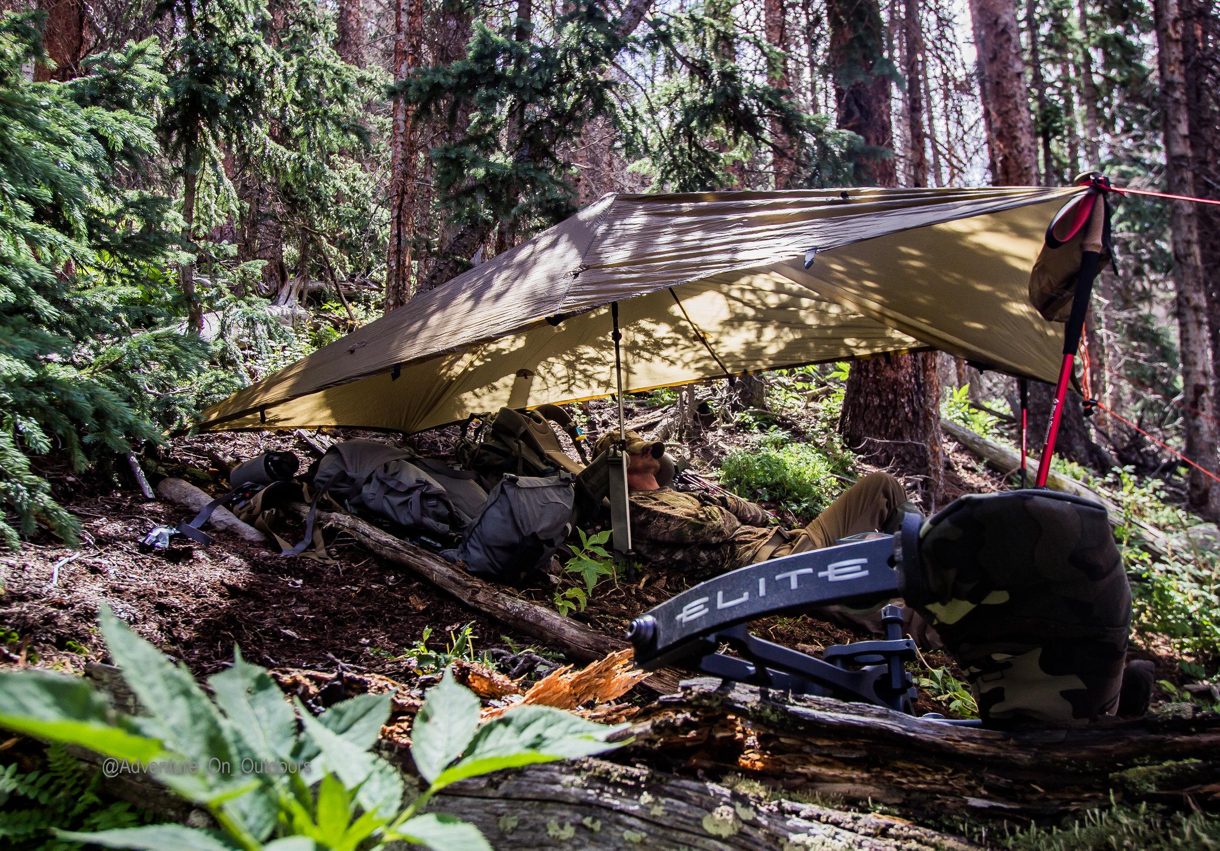 FOREST SHELTER ELK CAMP.jpg