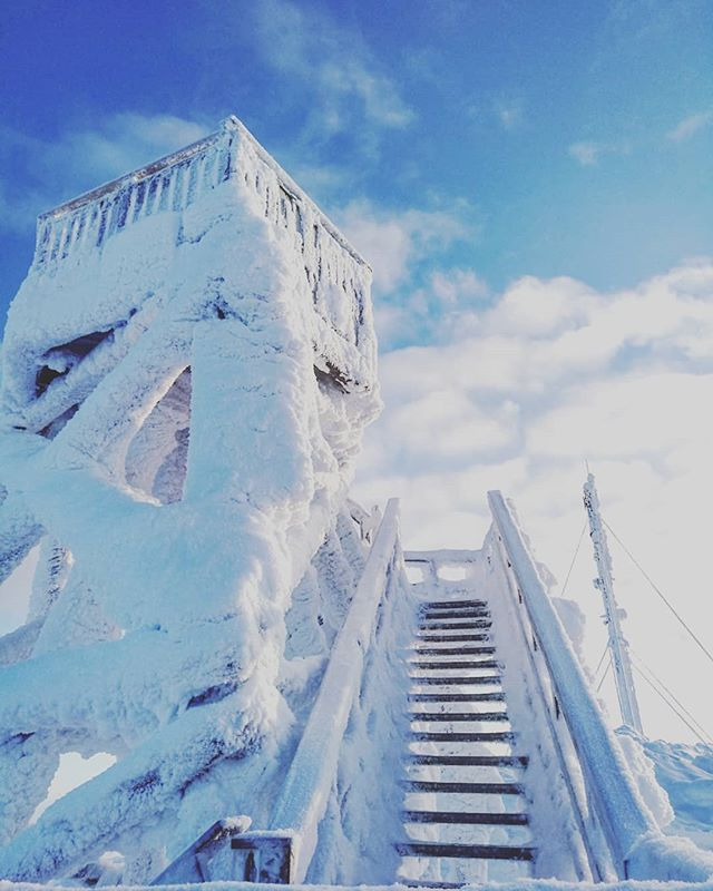 Another beautiful day in the winter wonderland❄❄❄ The perfect weather for sightseeing at the top of Kaunispää fell or to ski in the Urho Kekkonen National park 👌 #saariselkä #stairwaytoheaven #timetravels #arctictimetravels #timetravelsclub #winterwonderland #lapland #laplandfinland #lapland #mylapland #mylaplandexperience #visitfinland #visitlapland #winter #winterfun #igtravel #travelmore #passionpassport #lonelyplanet #igers #travelling #travelgram 📷@mailabeille