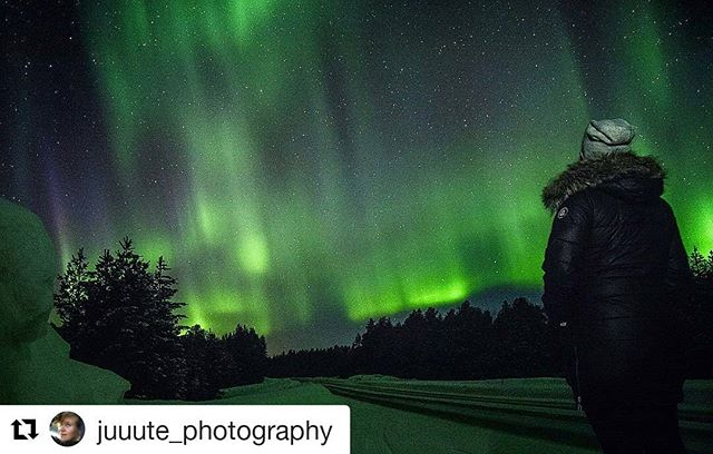 #Repost @juuute_photography (@get_repost) ・・・ I saw something from the window! We pulled over on the way back from our road trip! Aurora Borealis start dancing last night all over the sky and above our heads! 🙈😍💚 My breath was taken away too many times at the single day! • • • #aurora #auroraborealis #sky #stars #night #roadtrip #astro #astrophotography #landscape #longexposure #capture #nature #photooftheday #beautiful #timetravelsclub #amazing #northernlights #instagood #instacool #love #lifestyle #photography #photographer #girl #bestoftheday #adventure #travel #aroundtheworld #everytraveler