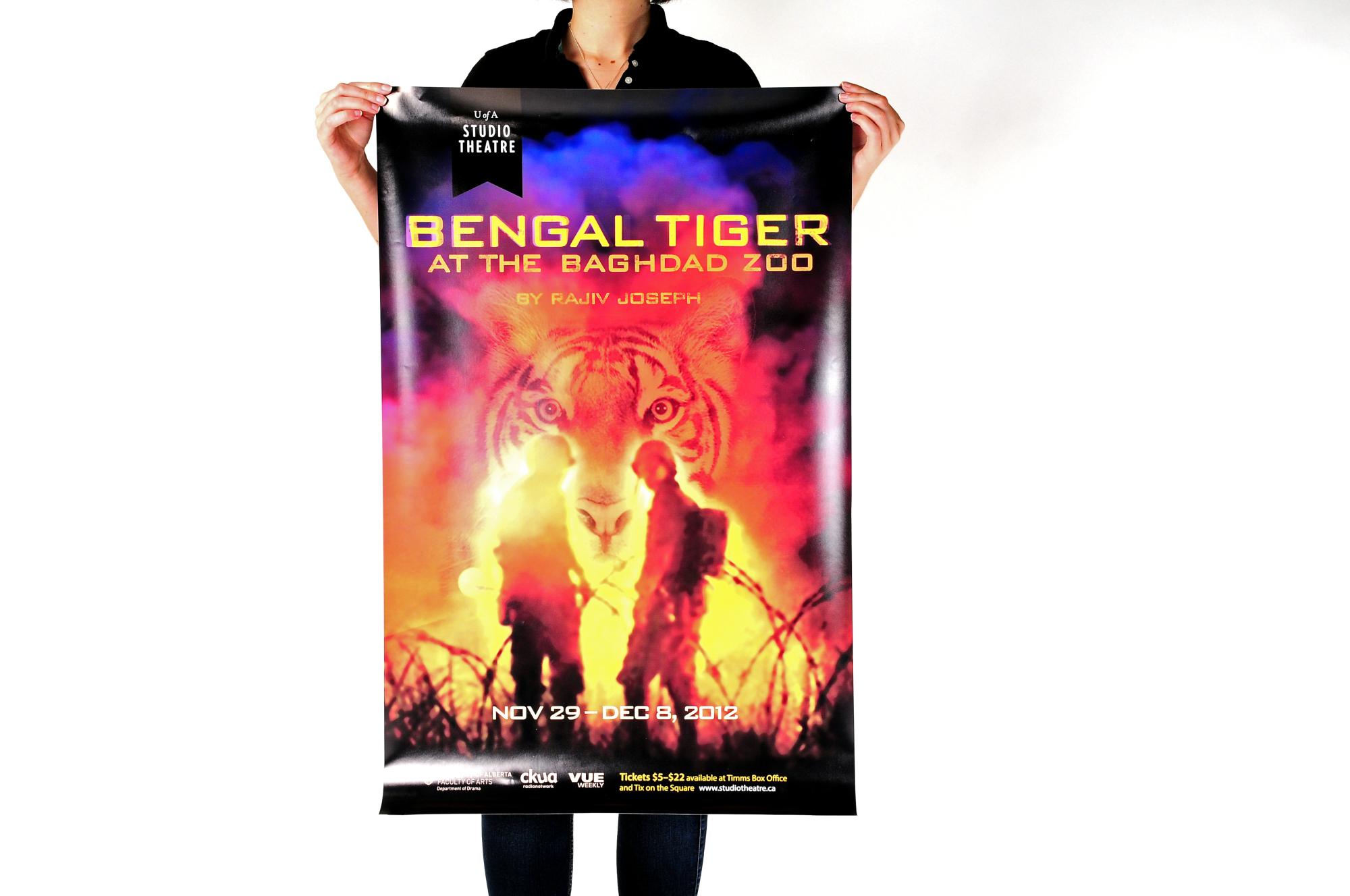 Bengal Tiger at the Baghdad Zoo