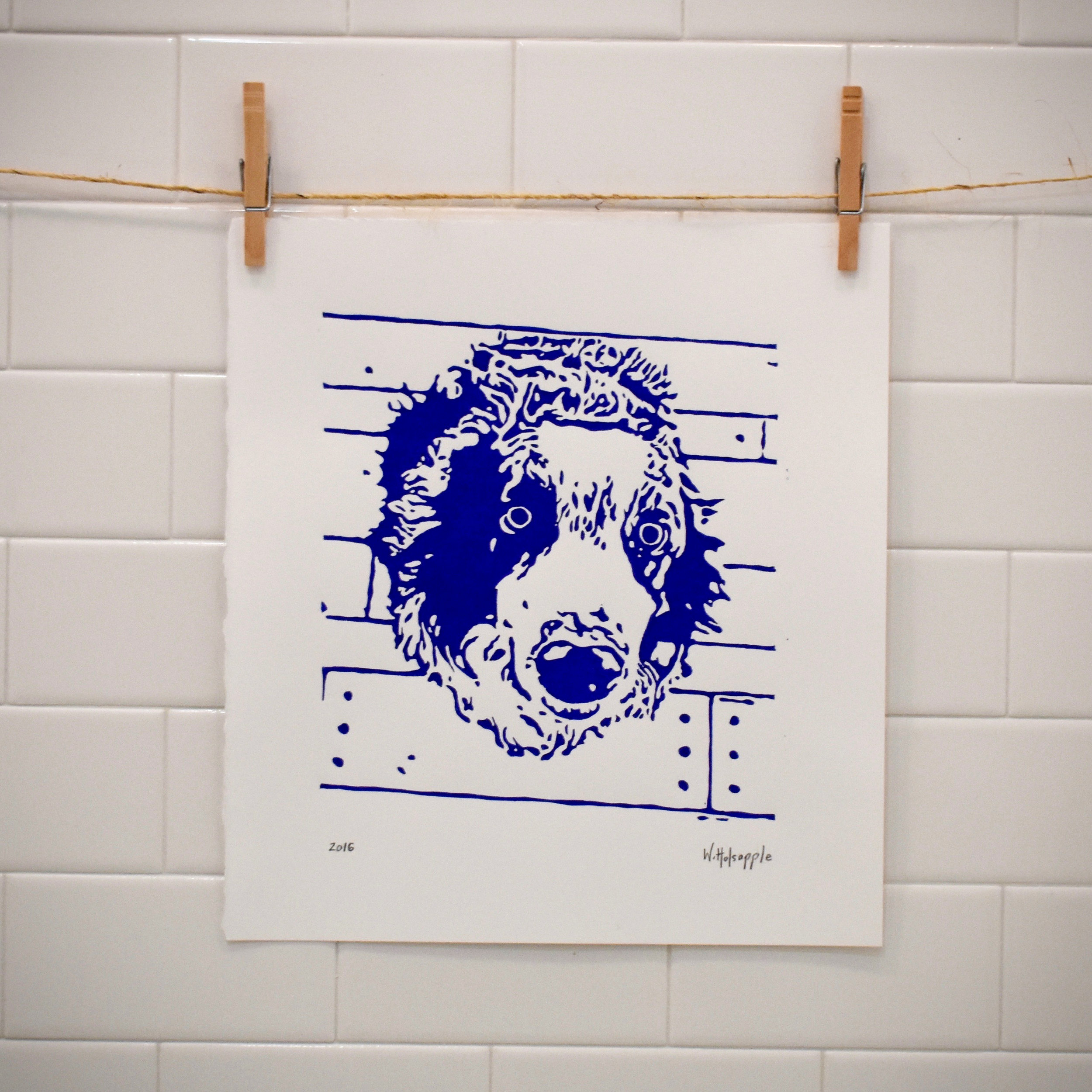 Blue Border Collie Art Print