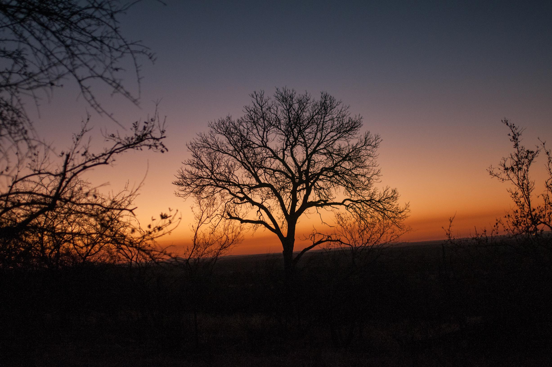 AFRICA-798.jpg