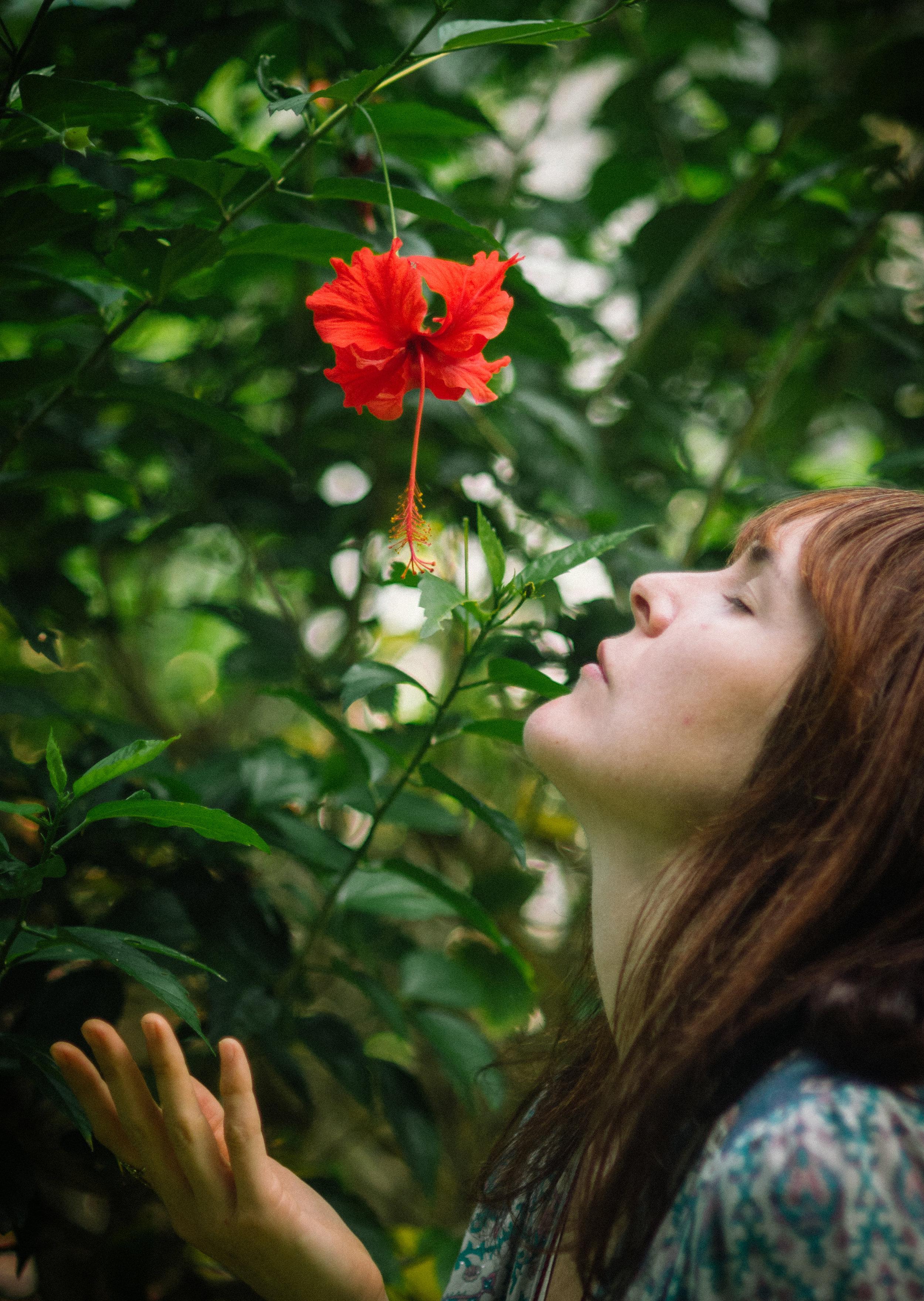 kelseyflowerbook-0581.jpg
