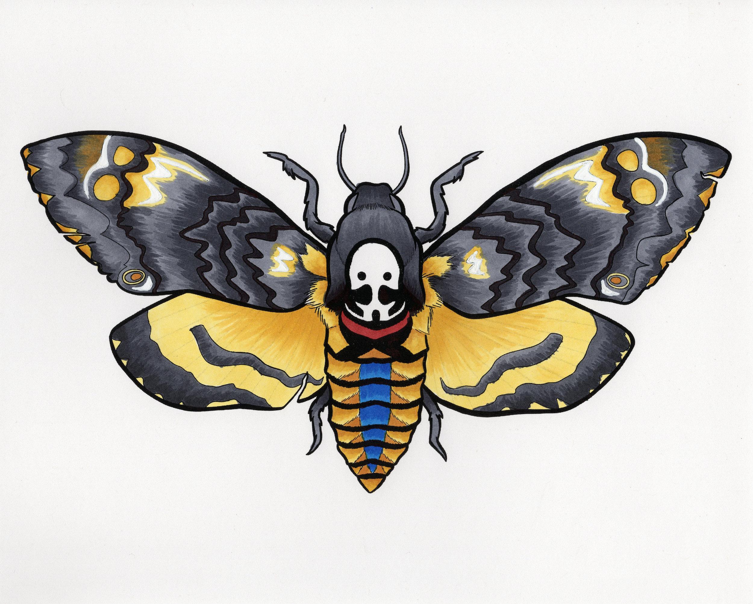 Deaths Head Moth (2018)