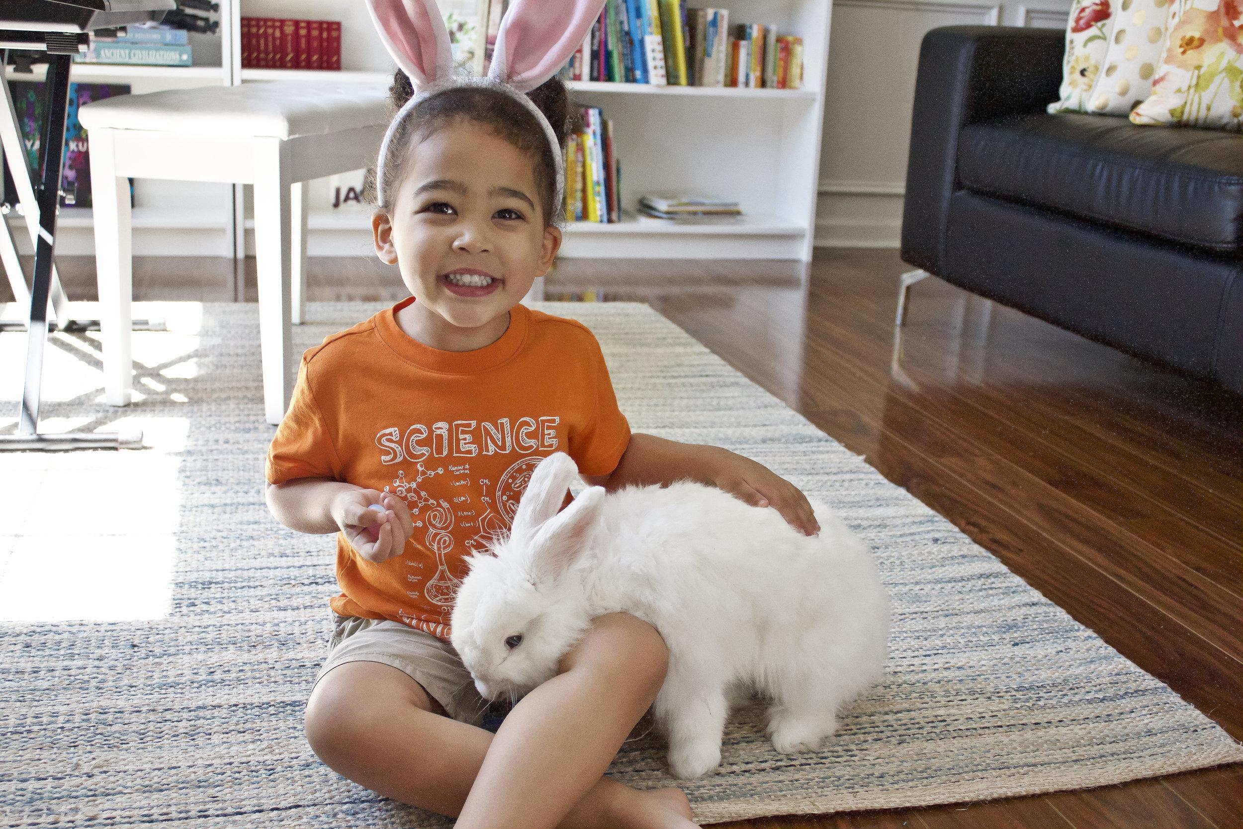 Bunny-sitting Ms. Fluffles