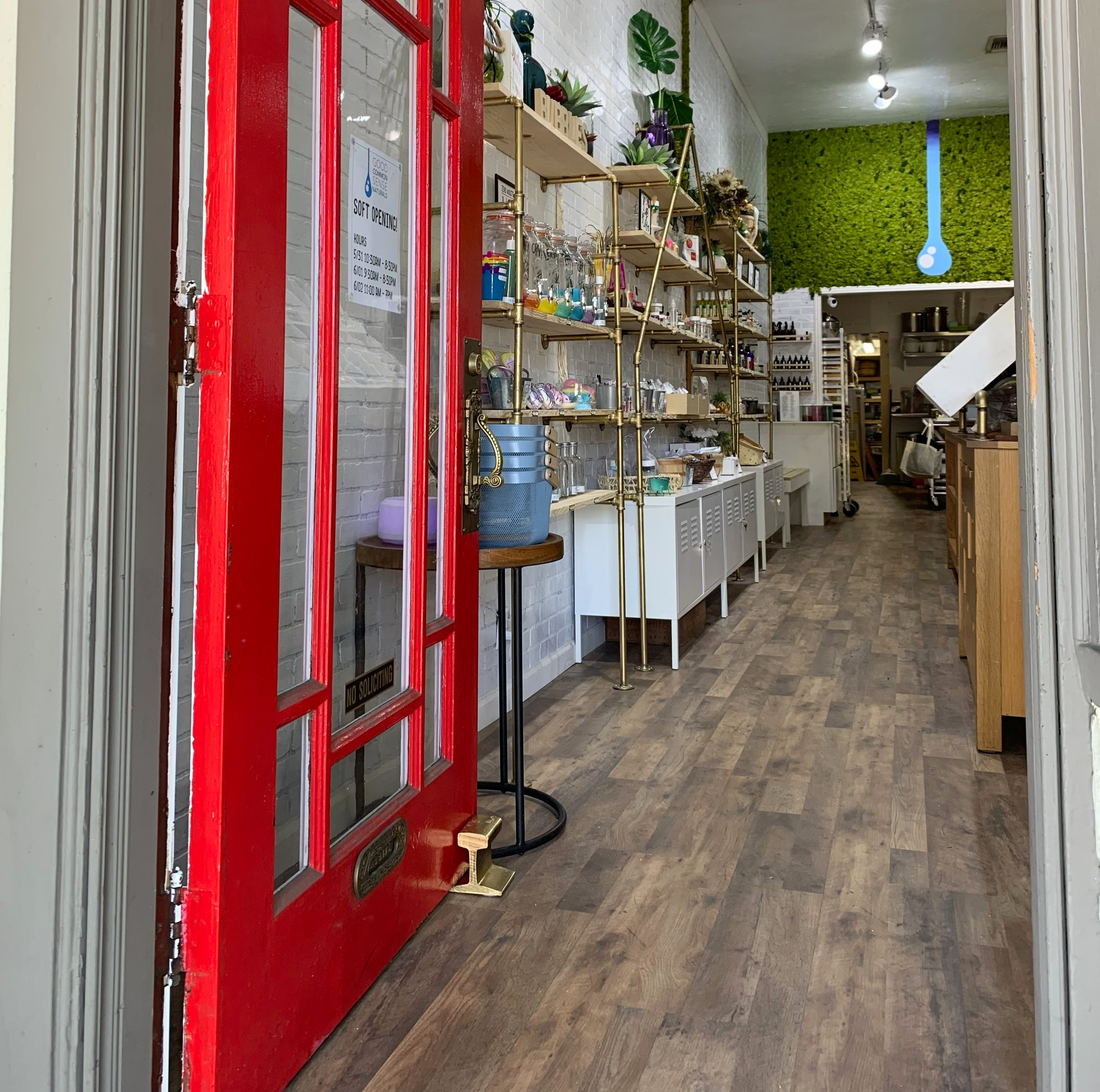 The first day Good Common Sense Naturals opened for the soft opening June 1, 2019