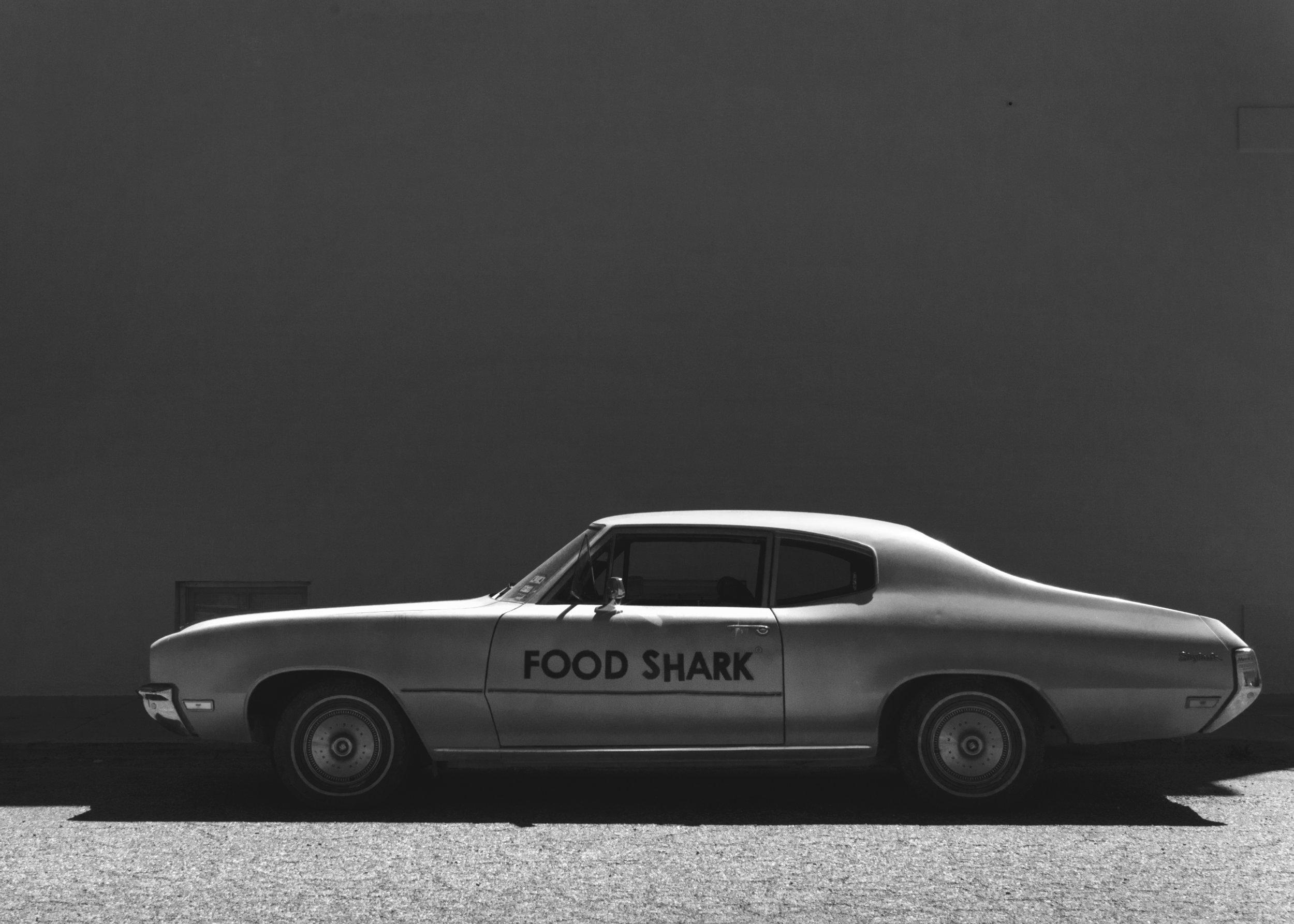 FOOD SHARK_MARFA.jpg