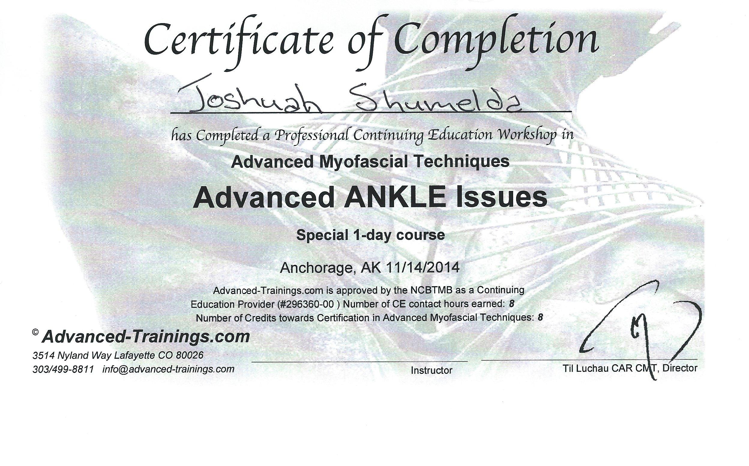 AMT Ankle 11-2014.JPG