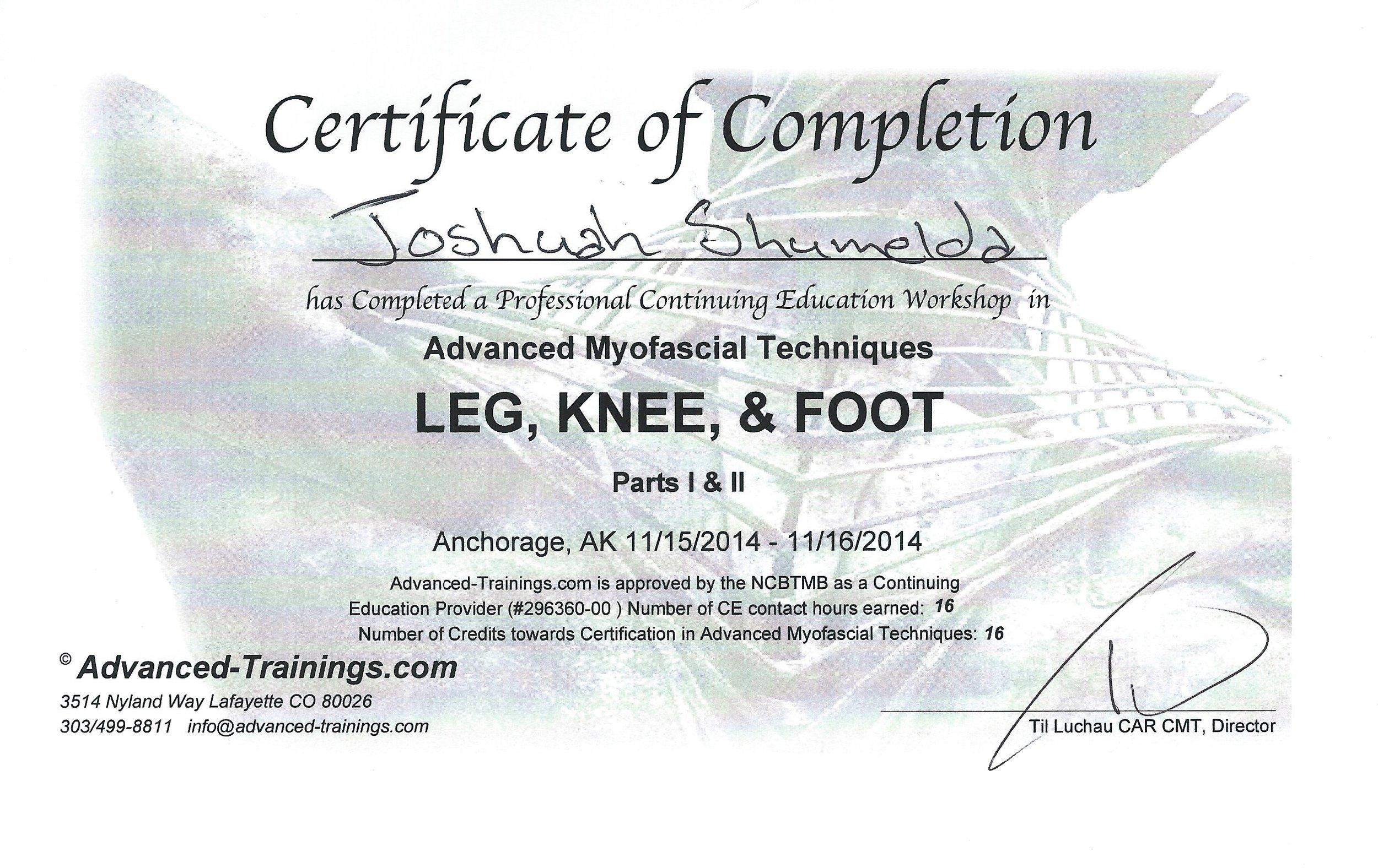 AMT Foot Knee 11-2014.JPG