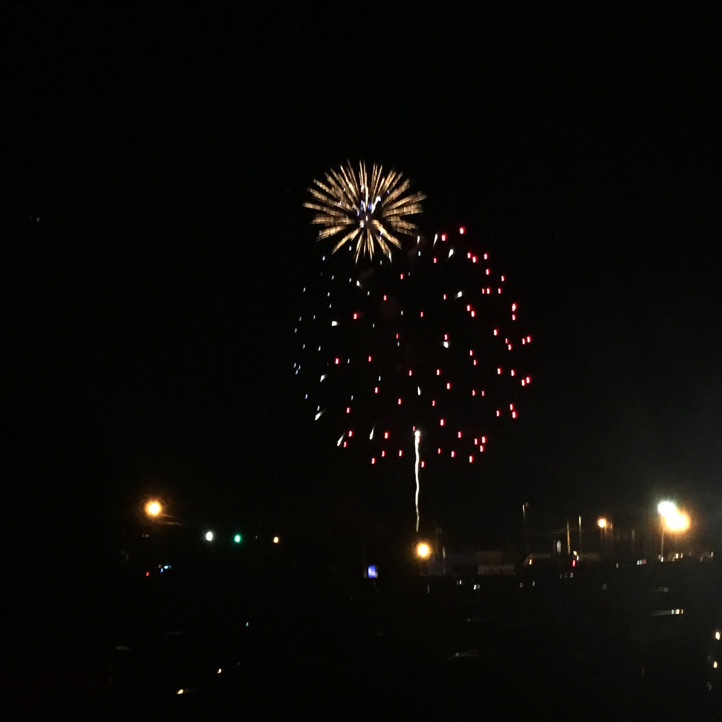 The fireworks were so beautiful!