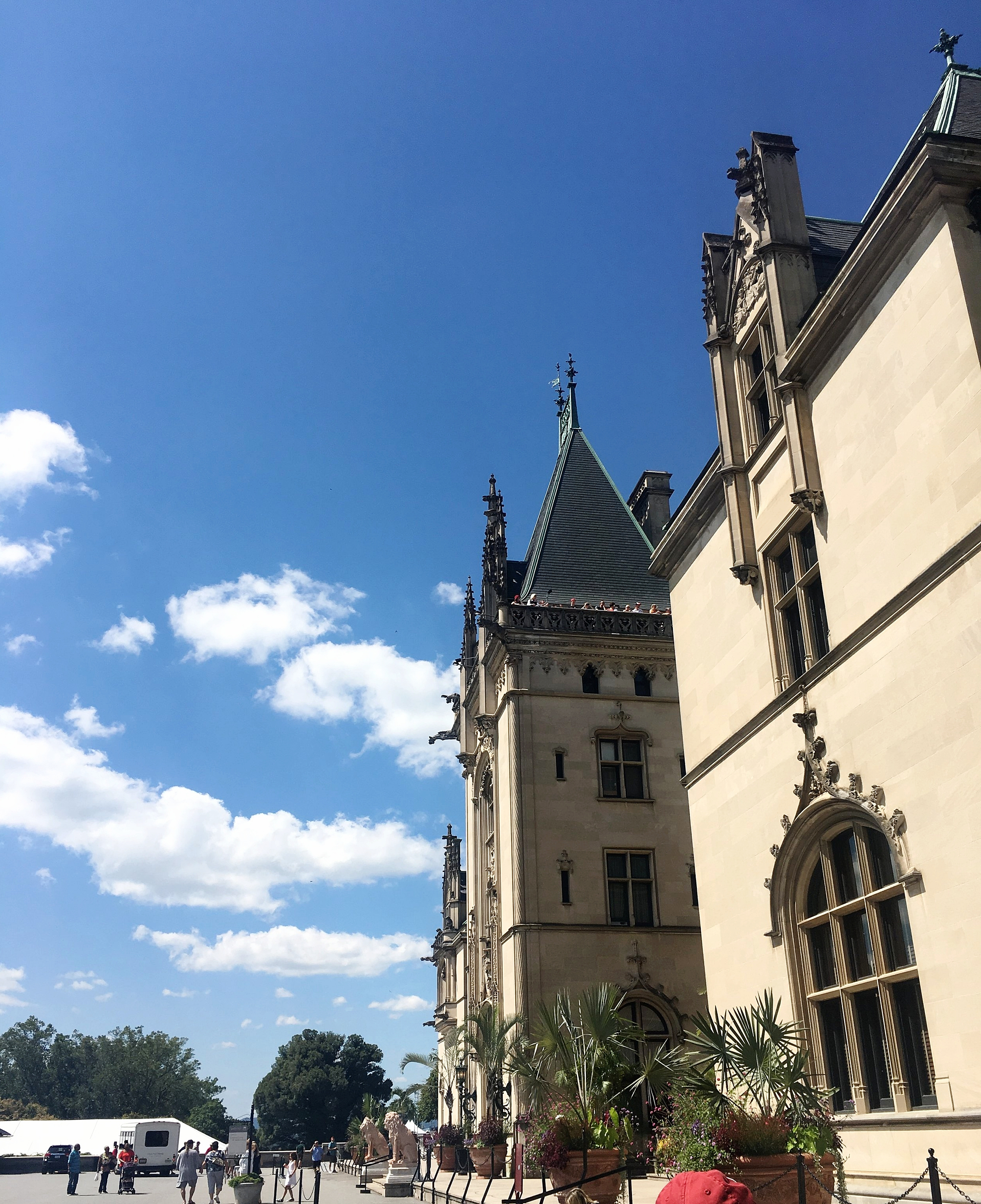 My first of hundreds of pictures at Biltmore Estate.