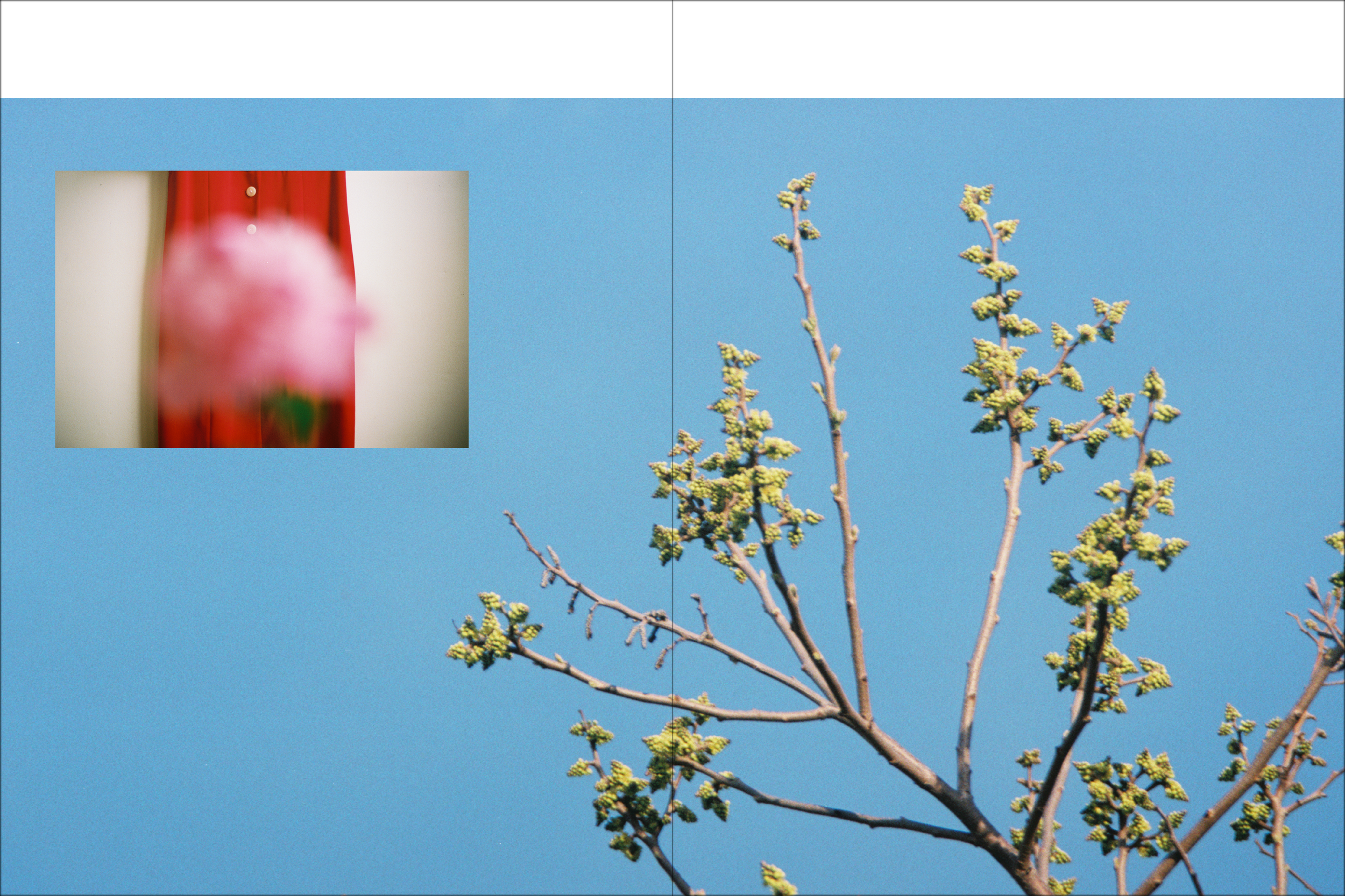 spring 18 35.png