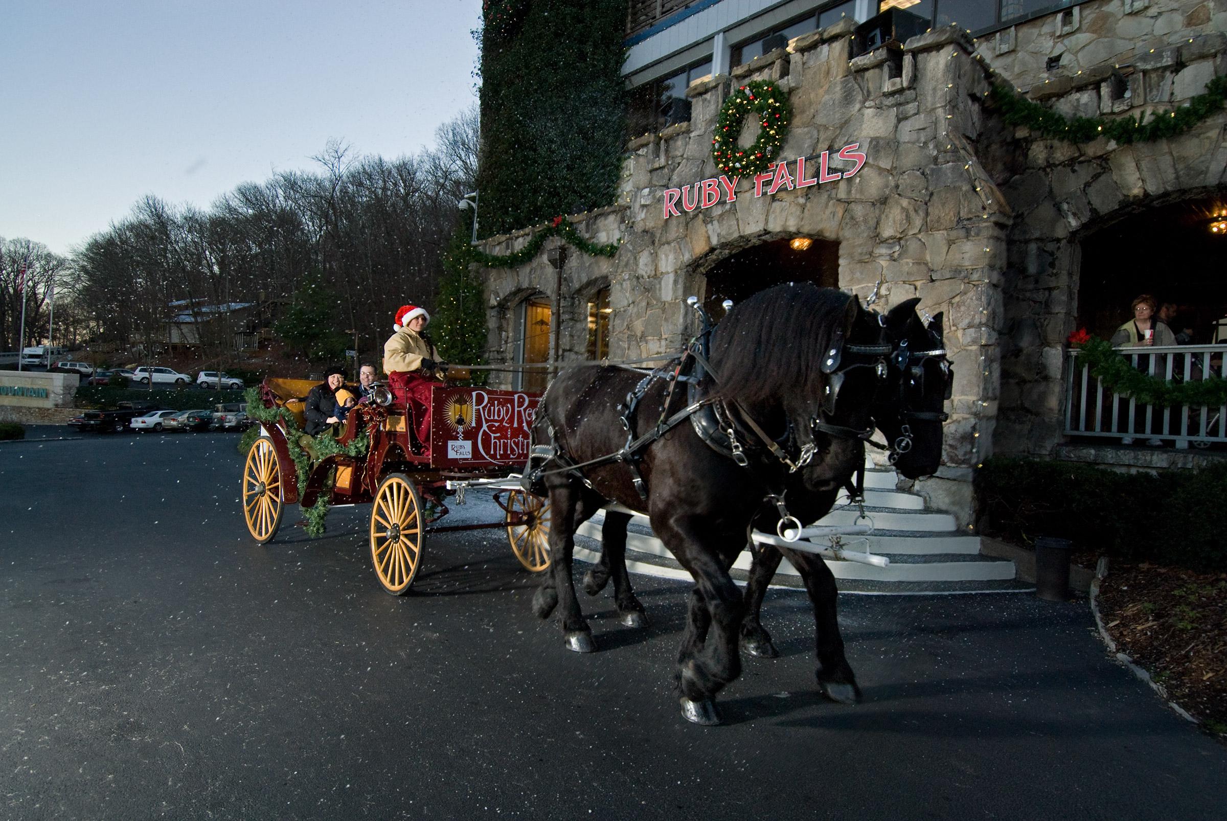 Ruby Falls' Christmas Underground through December 23rd!