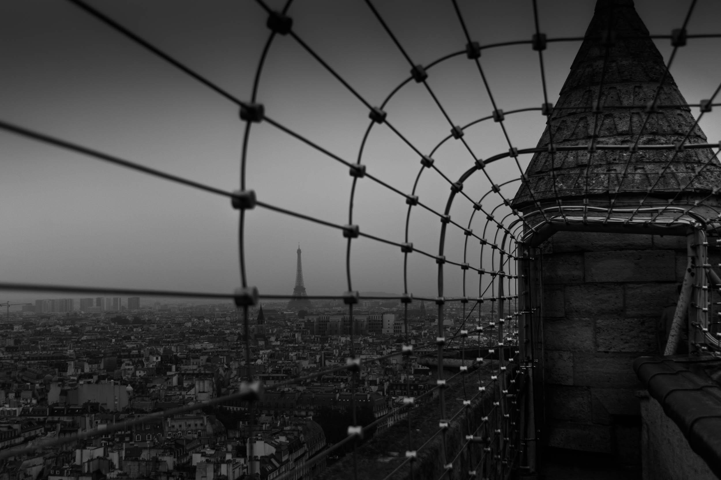 Parisian Gloom.jpg