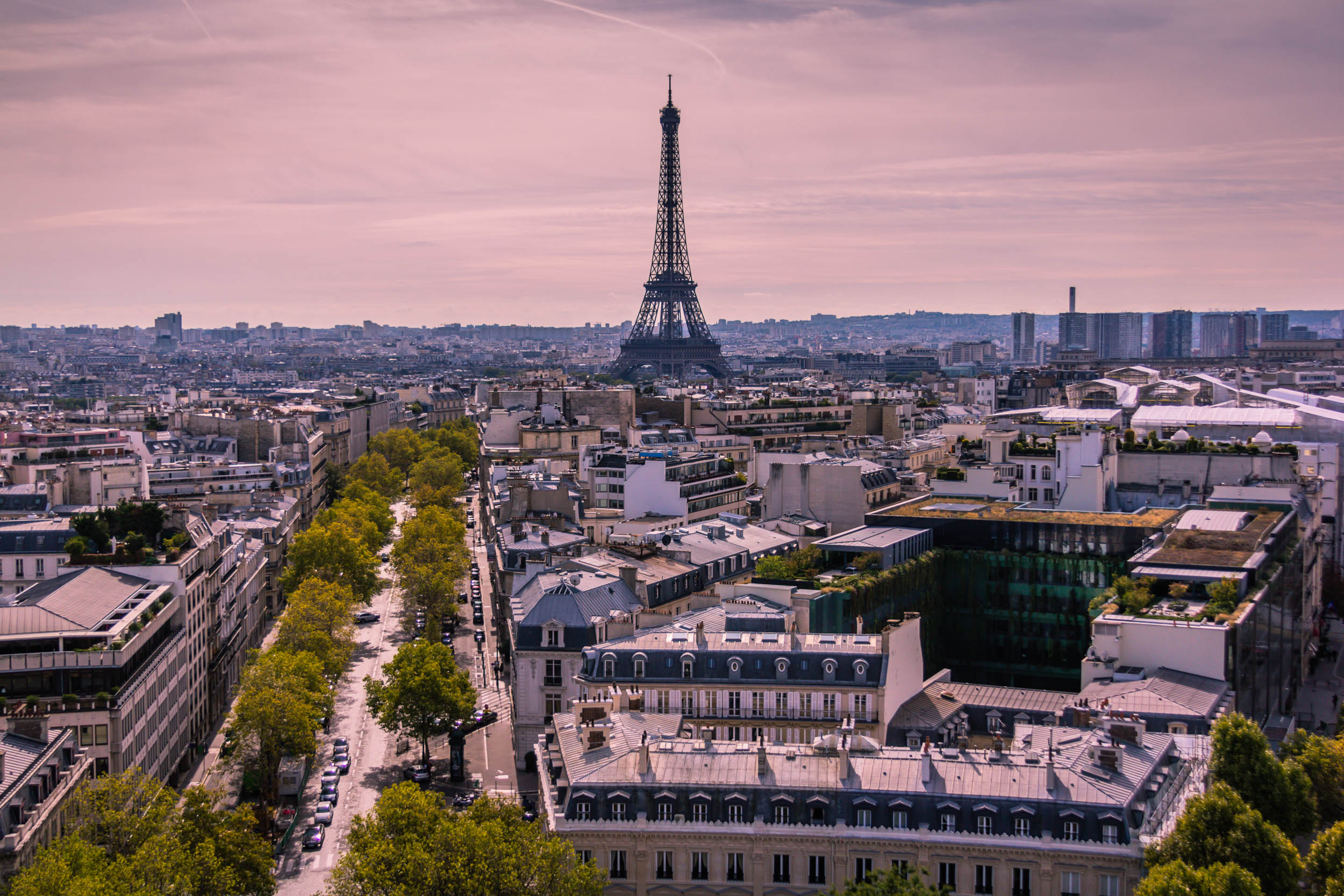 Pink Paris.jpg