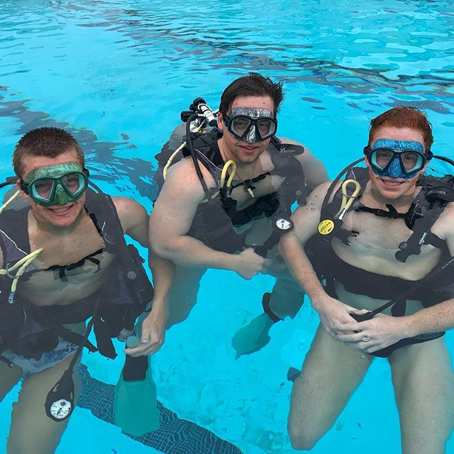 New masks are in and our students love them!! #leftcoastscuba #scuba #scubadiving #almostsummer #divegear #freediving #divelife #scubaislife