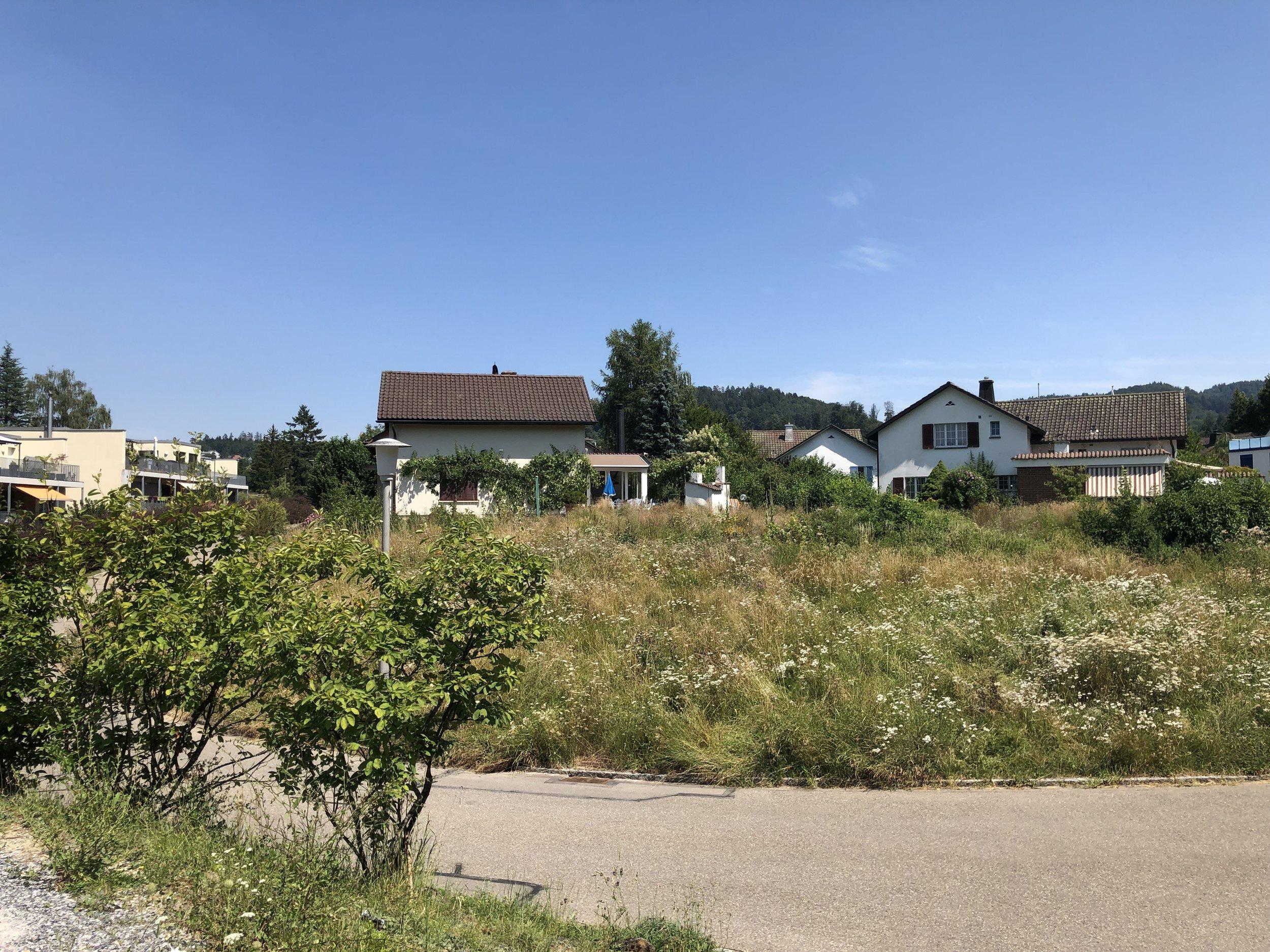 Waldstern - Himmlisch nah an Stadt und Wald. Birmensdorf Zürich Projektankündigung Verkauf Neubauprojekt Boll Immobilien .j
