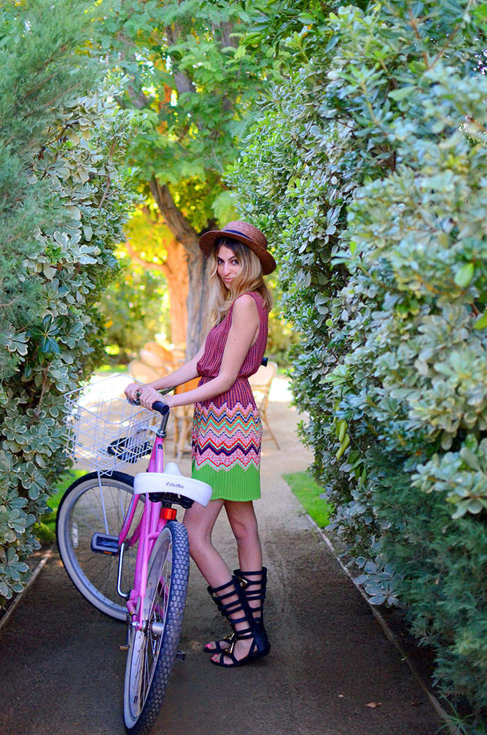 bikes and gardens