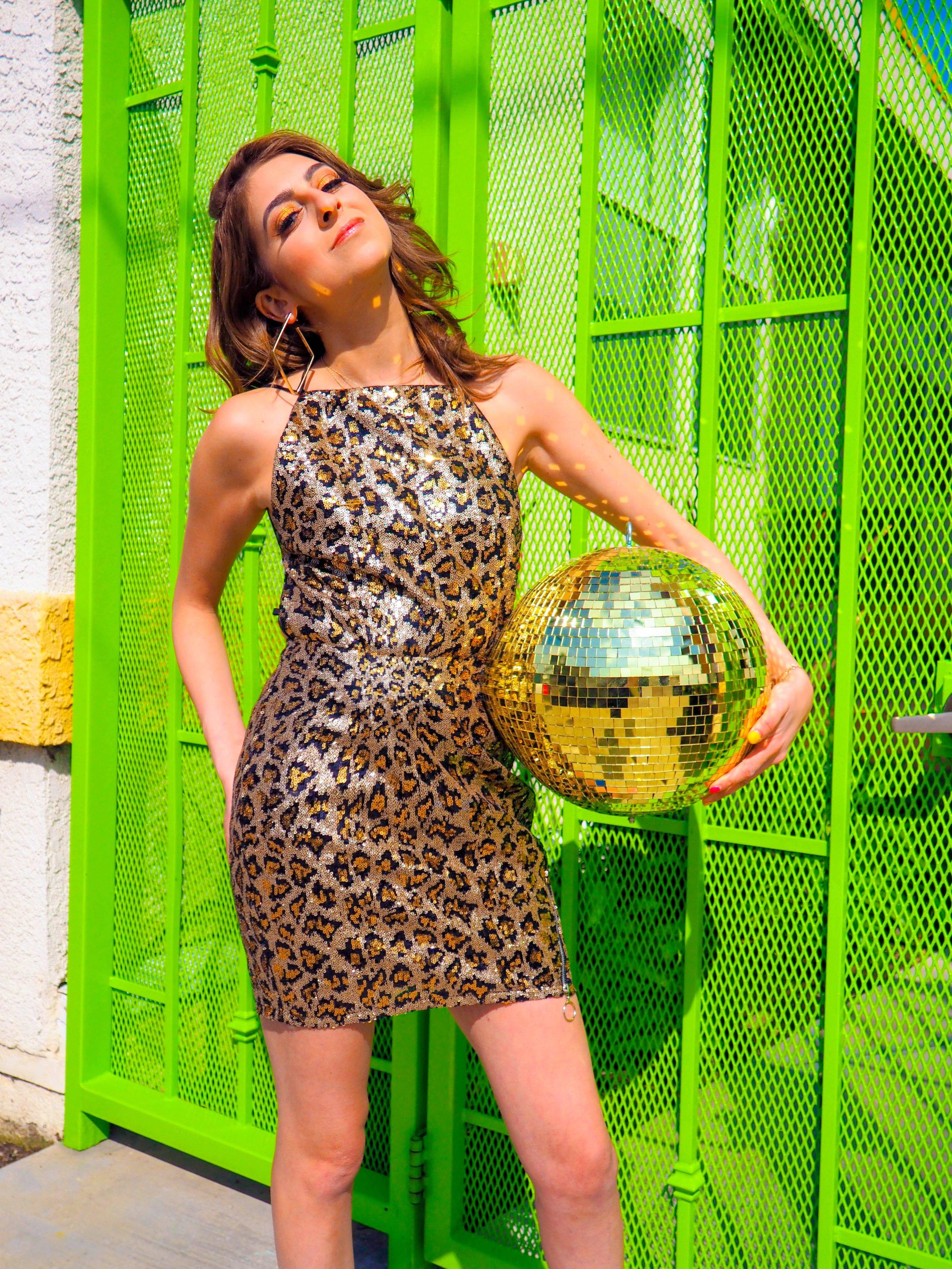 Cheetah 8.jpg