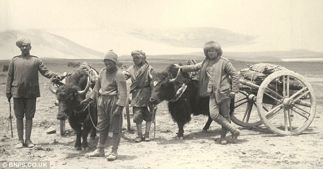 Sikh and British soldiers with a Tibetan guide and a Yak train -photograph by John Claude White, a political officer and joint leader of the expedition