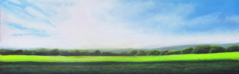 Landschaft1_800x250.jpg