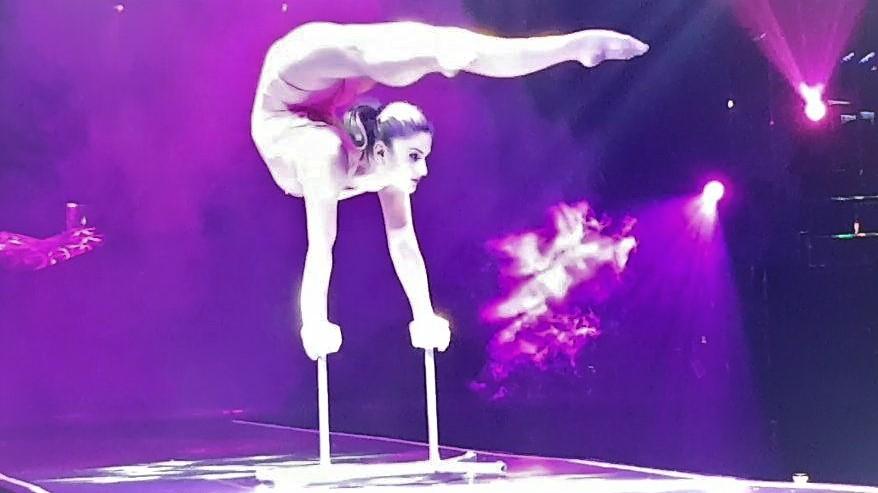 Gymnastics : 體操
