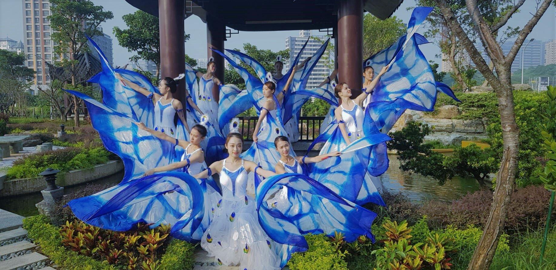Butterfly dance: 蝴蝶飛舞