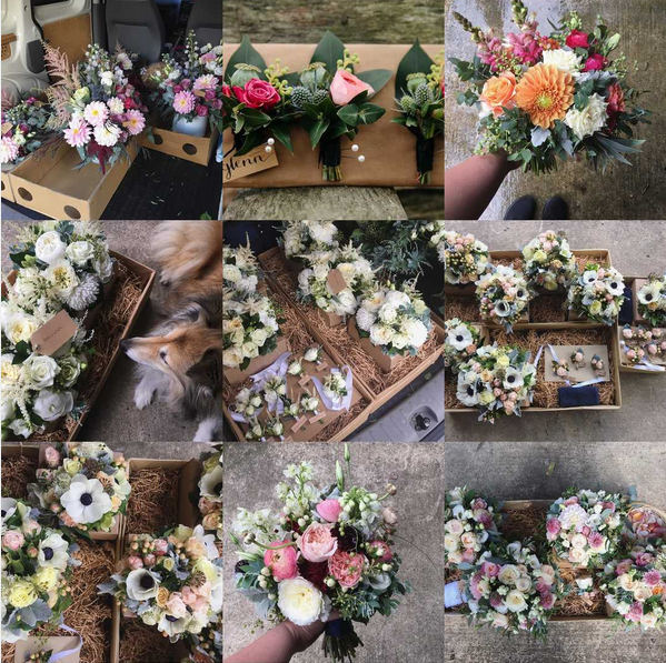 2017 Best Nine Blooms and Twine.png