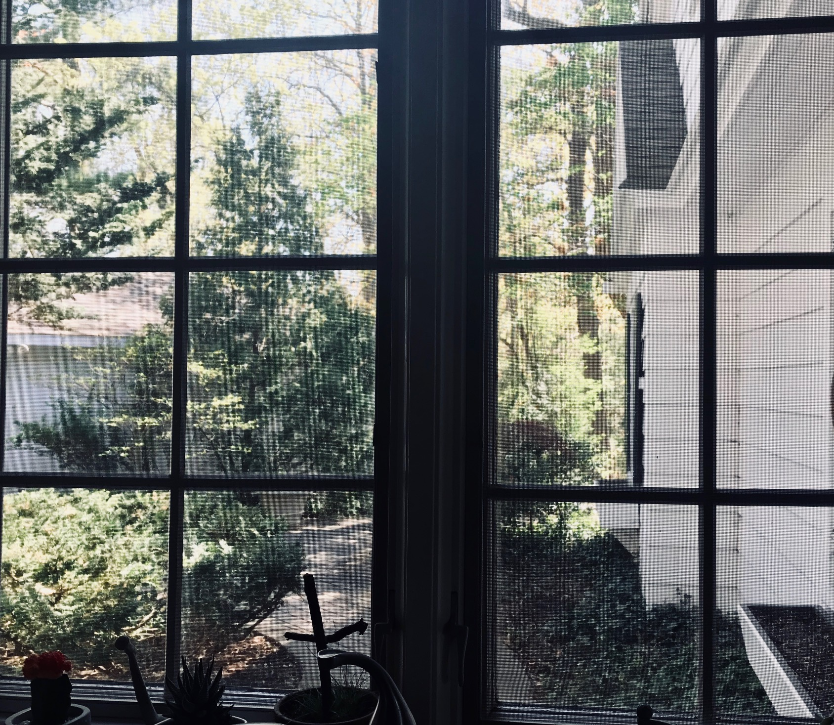 VIEWS OF NATURE FROM EVERY WINDOW