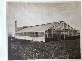 Old Greenhouse Sided House (1).jpeg