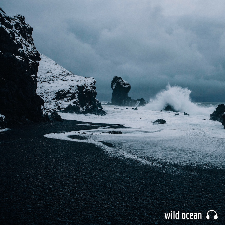 wild_ocean_1x1_text.jpg