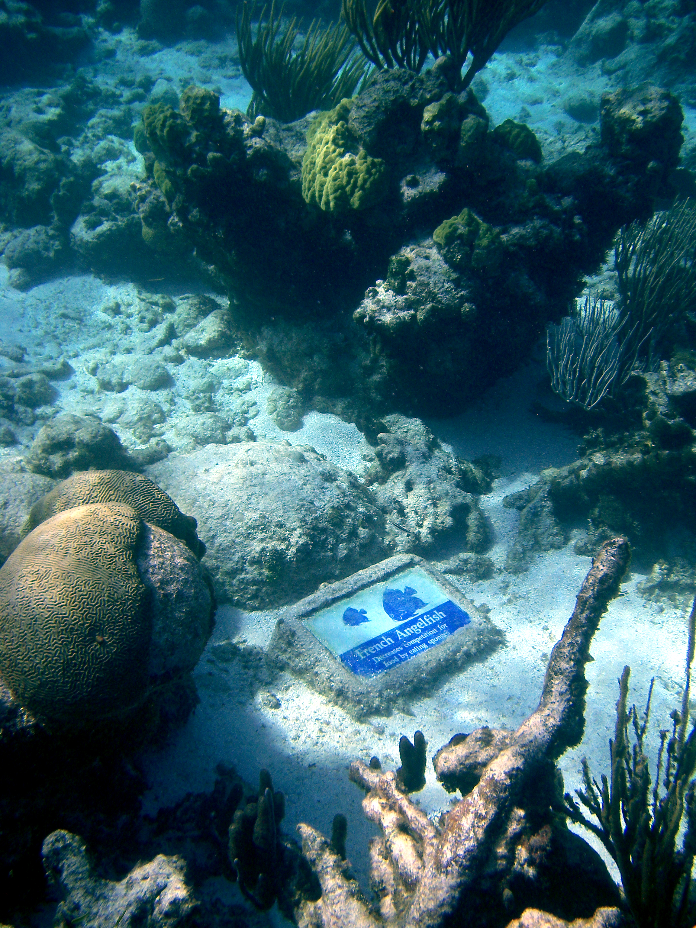 Underwaterplaque.jpg