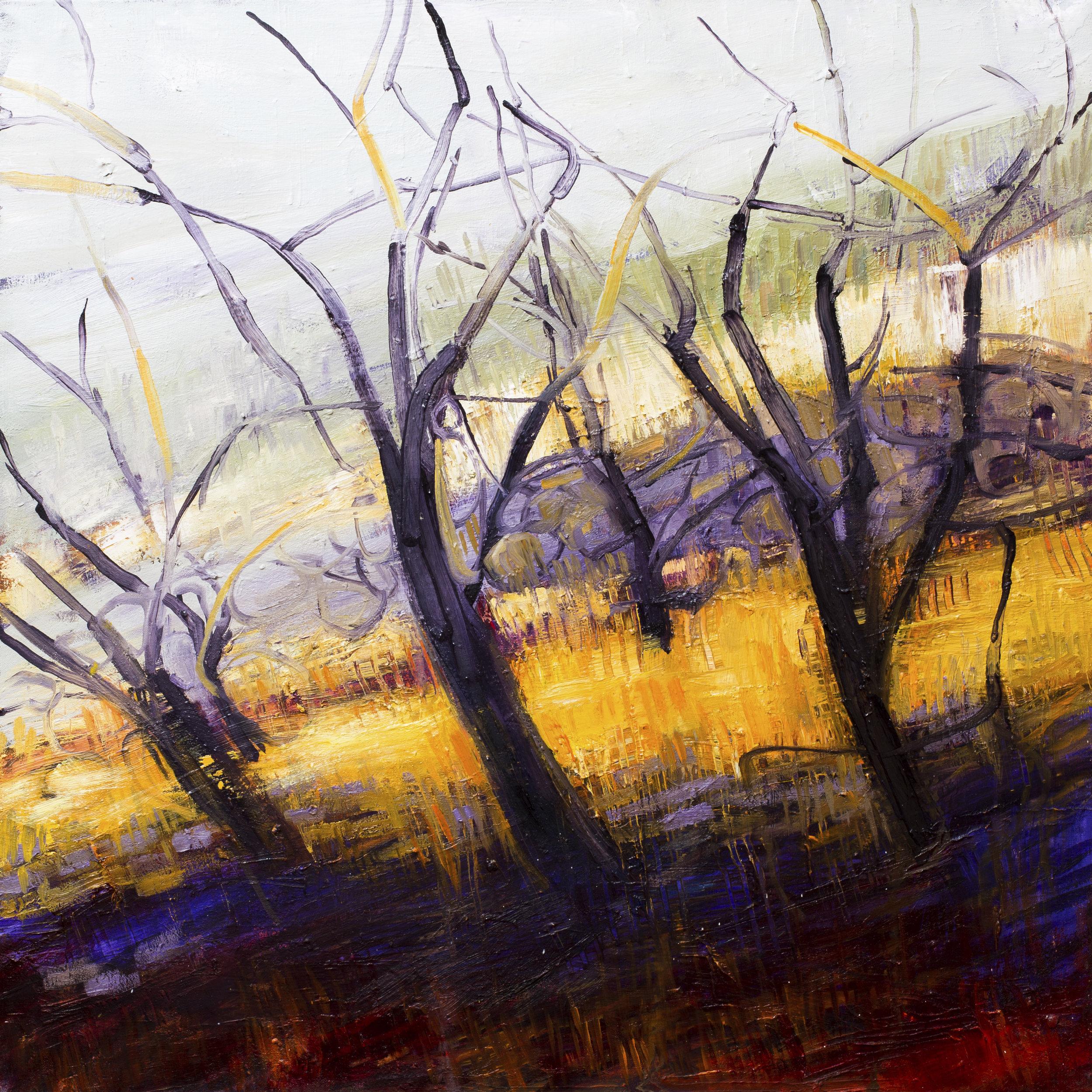 """""""Almond Trees near Periana"""""""