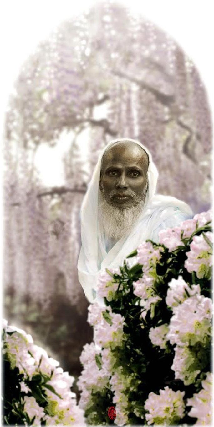 His Holiness M.R. Bawa Muhaiyaddeen, may Love surround him and protect him always