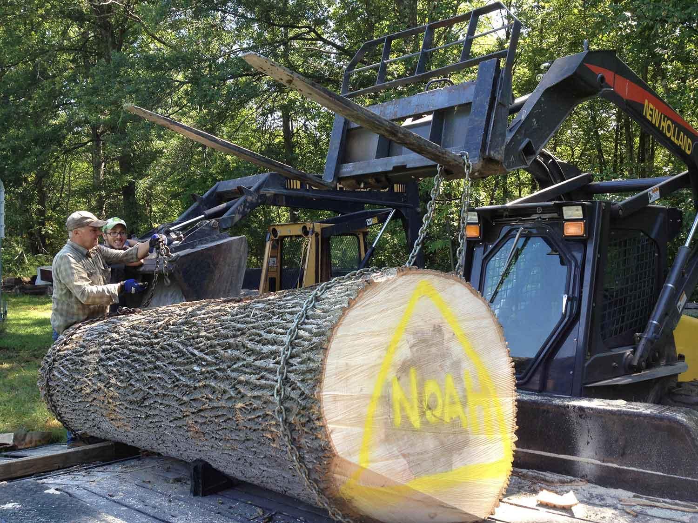 sawmill-selects-29441.jpg