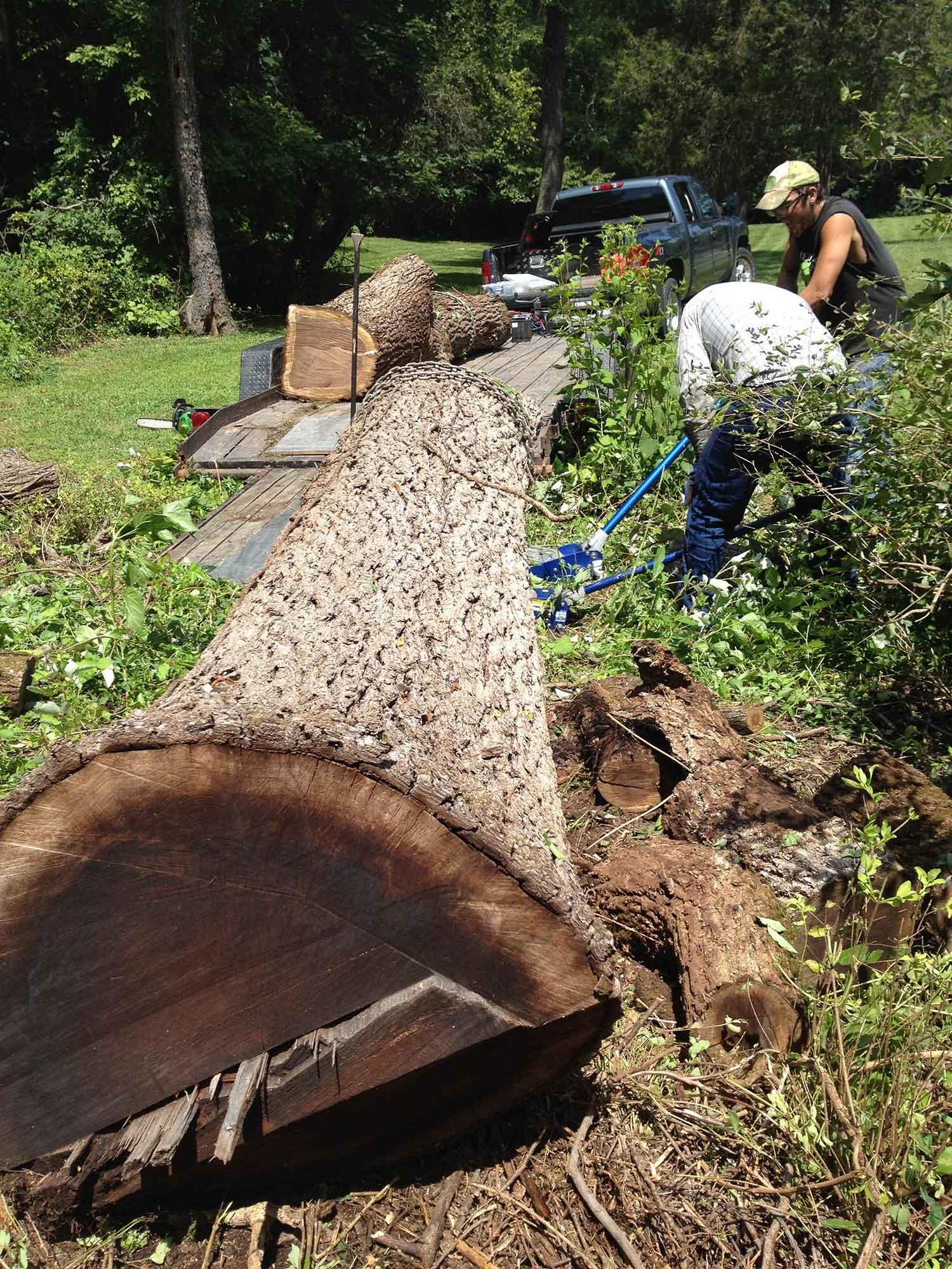 sawmill-selects-36649.jpg