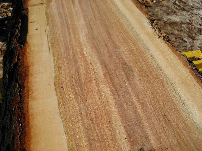 wickham-boards-4368.jpg