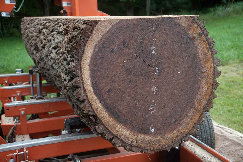 wickham-sawmill-heuer-0746.jpg