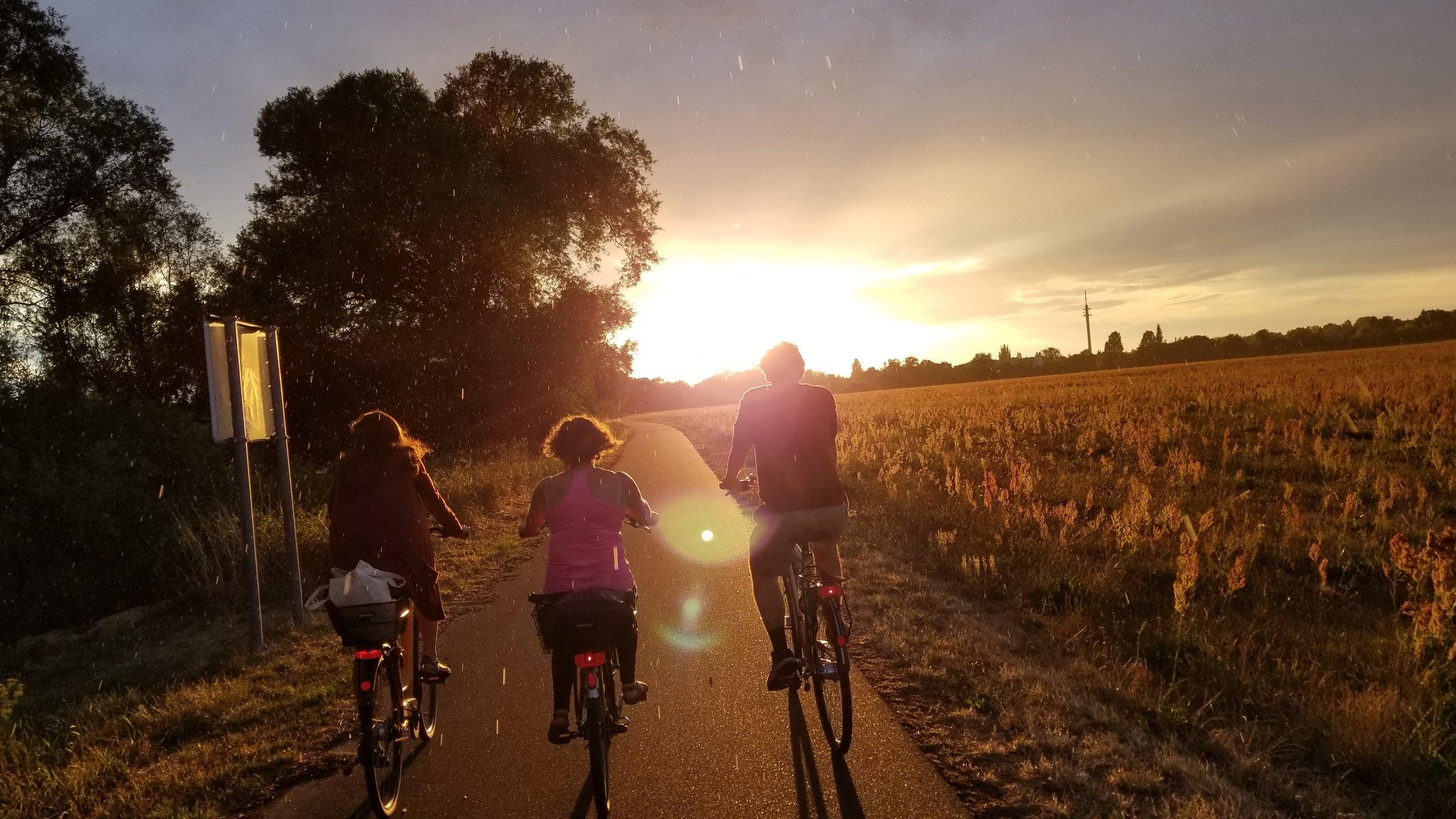 Cycling on the Elberadweg outside Wittenberg.