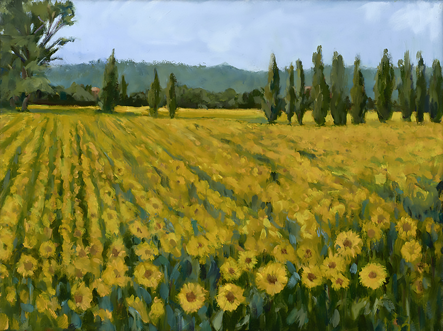 Sunflowers in Tuscany , oil on panel, 12 x 18 in