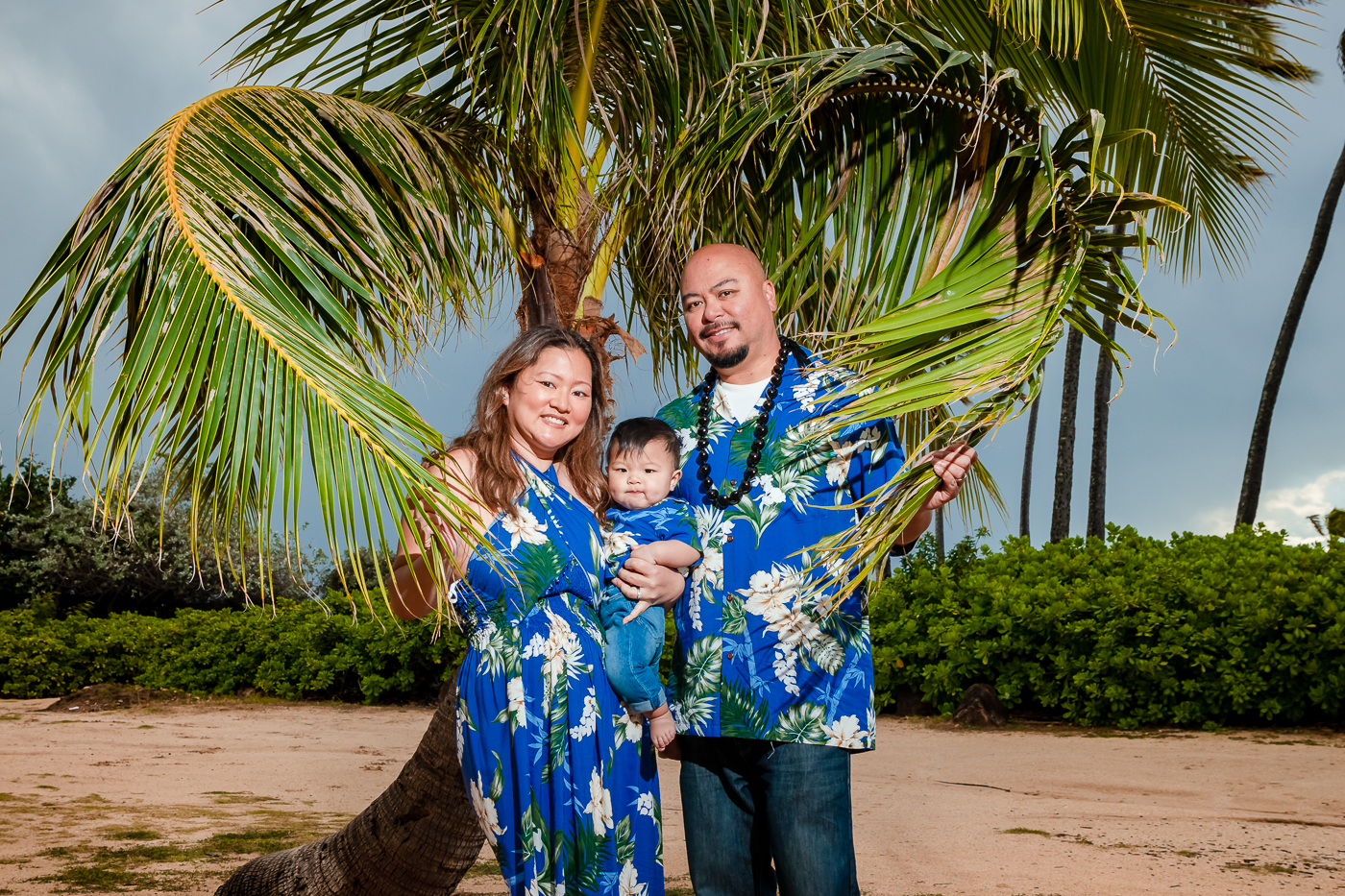 family portrait oahu hawaii palm tree heart shape child baby son
