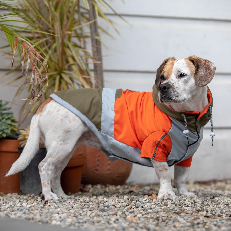 PC: The Long Dog Clothing Company