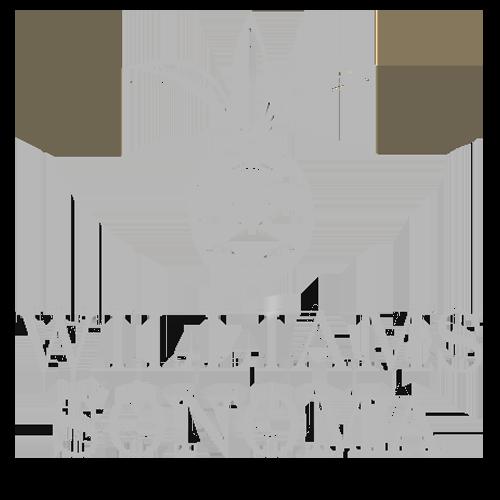 Gray_WilliamsSonoma.png