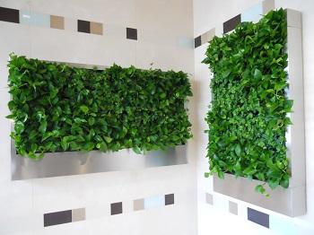 benefits-of-green-walls-image-1.jpg