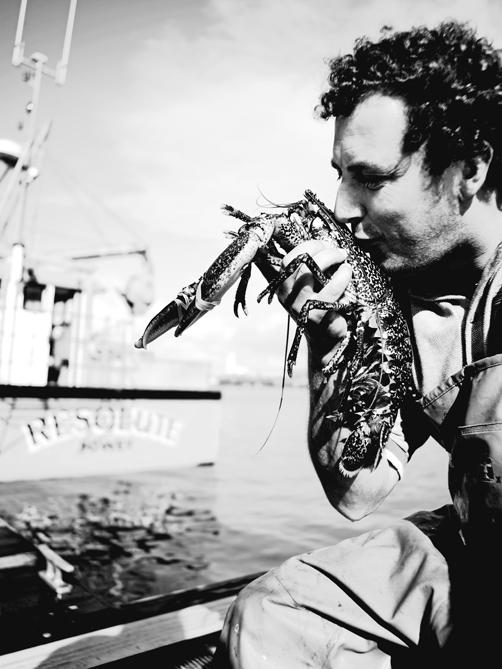 john lewis foodhall lobster.jpg