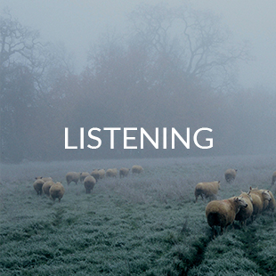 buttons_LISTENING.jpg